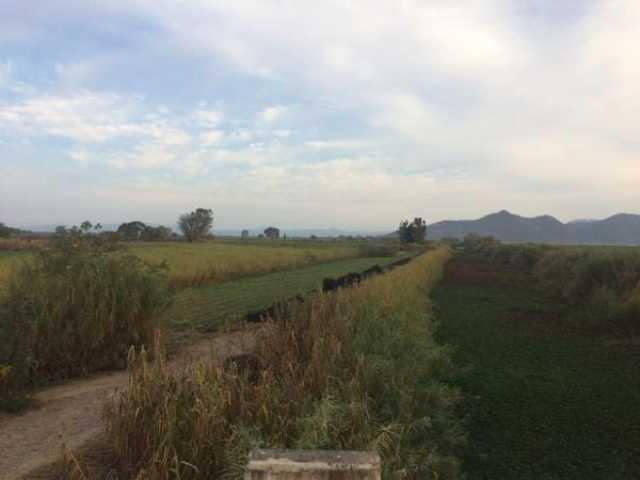 Se venden parcelas con mucha agua en Álvaro Obregón Michoacán